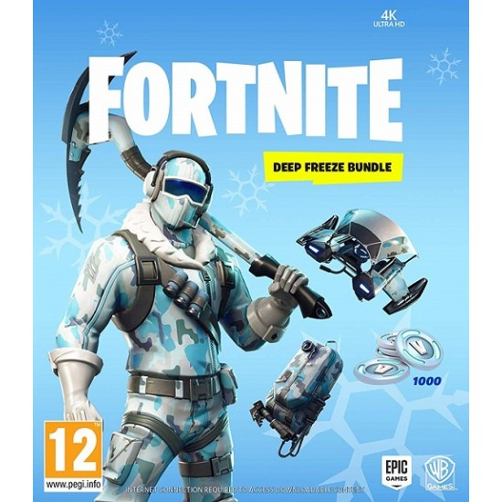 Fortnite Deep Freeze CD Key